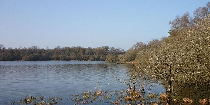 Navettes gratuites pour l'étang du Boulet